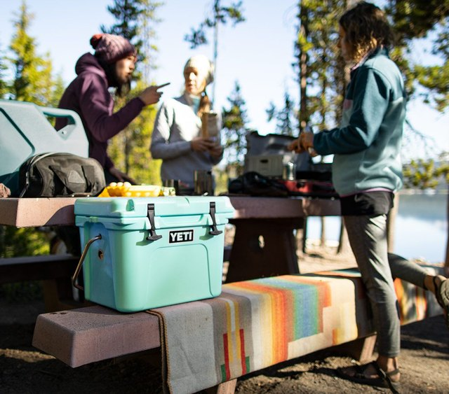 The 8 Best Coolers for Every Type of Activity, From Picnics to Camping | Hunker