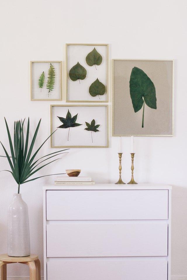 Preserved leaves in floating frames