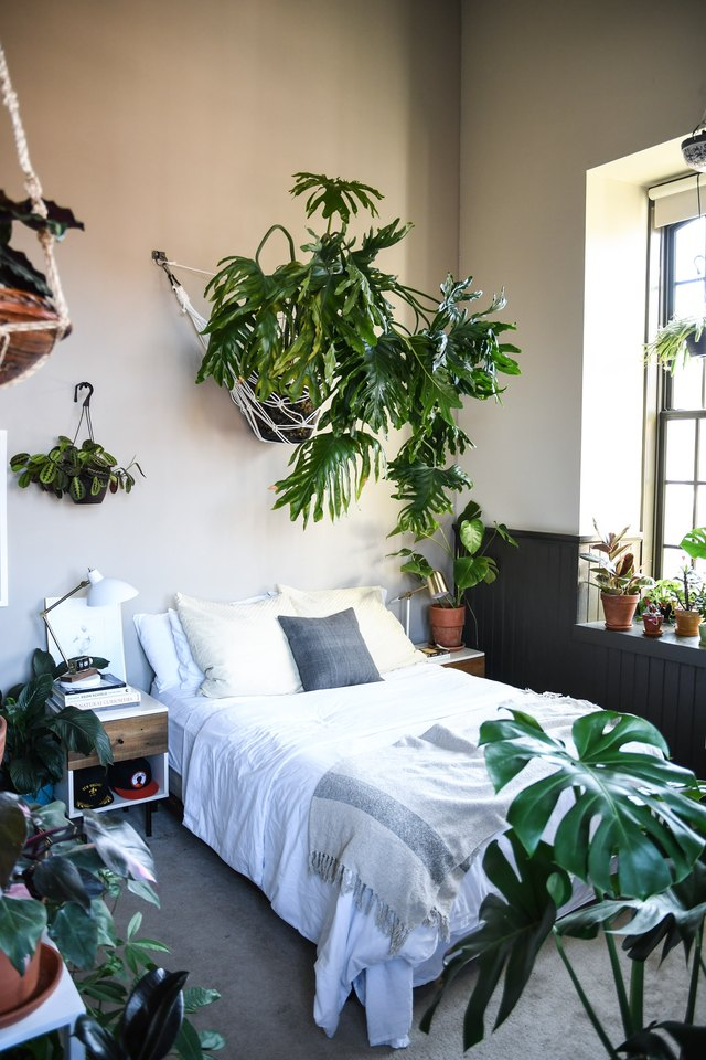tropical plant-filled bedroom