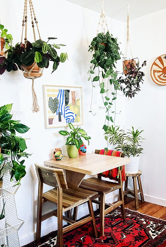 small dining room with lots of greenery