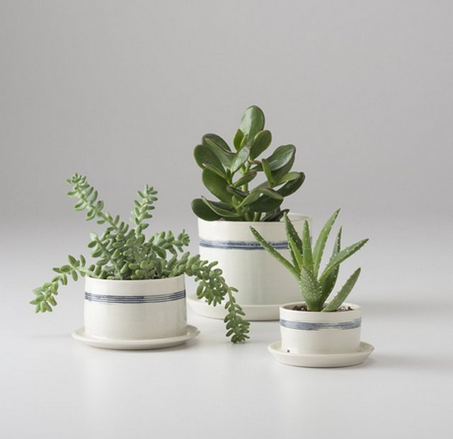 Schoolhouse porcelain planter