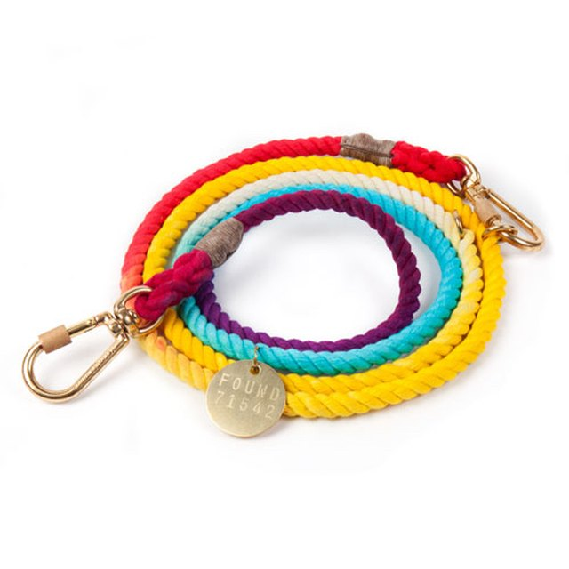 colorful rainbow inspired dog leash