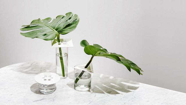 modern shape vases