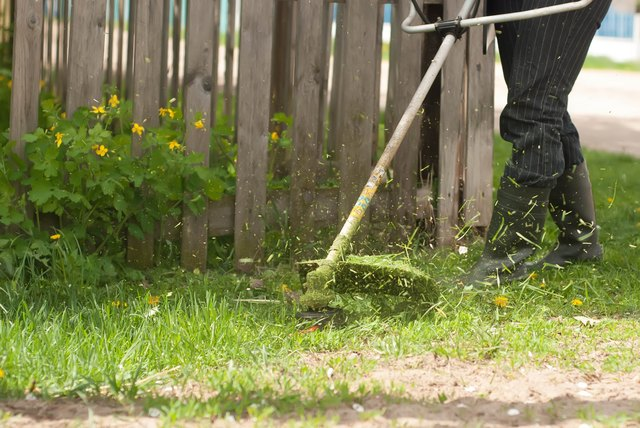 The mowing of grass, close-up,