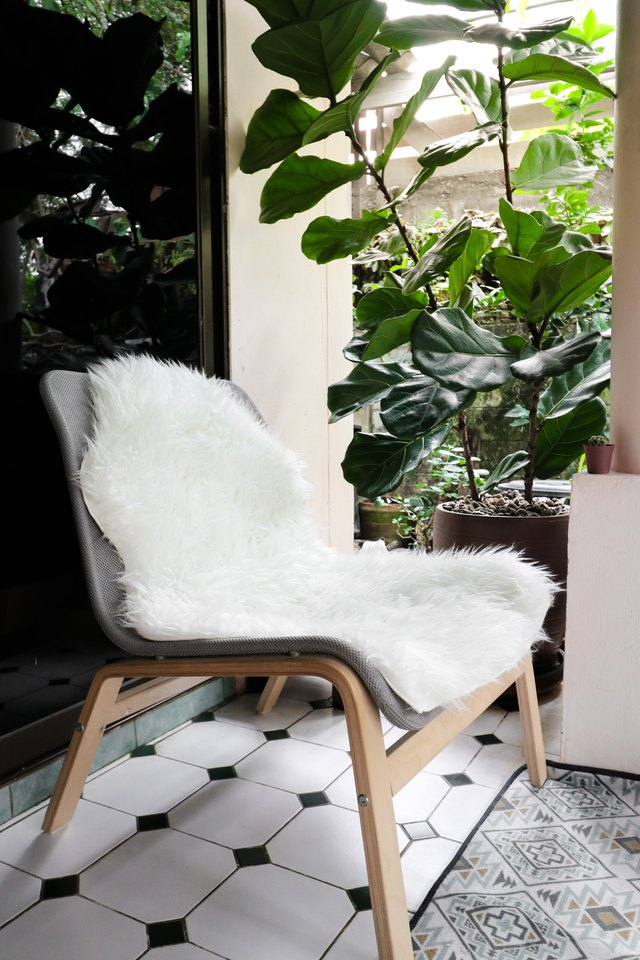 White sheepskin on easy chair with vintage rug and fiddle leaf fig tree in pot.