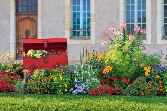 Vibrant flowers in Nevers