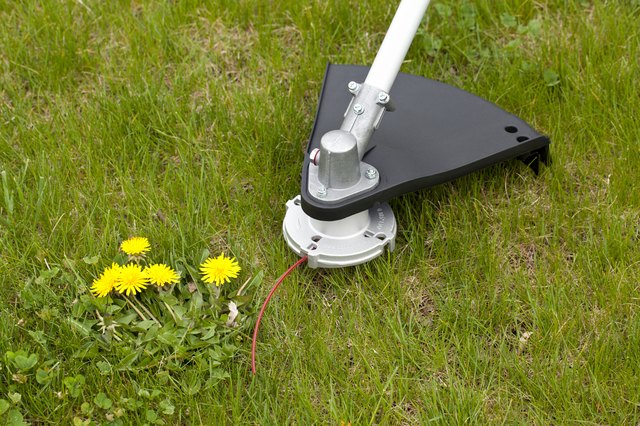 Dandelion and Weed Trimmer