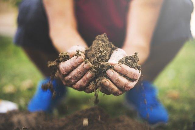 Senior woman holding soil in her hands