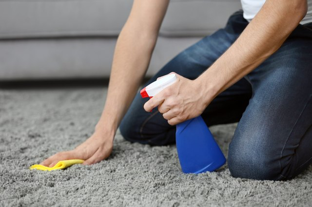 Young man cleaning carpet at home, closeup