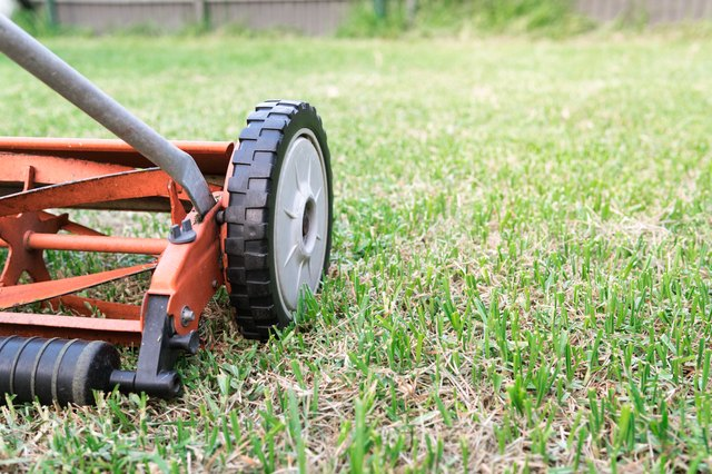 hand mower used to cut lawn