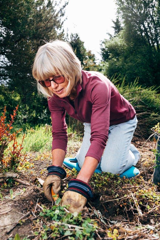Active senior woman weeding her garden