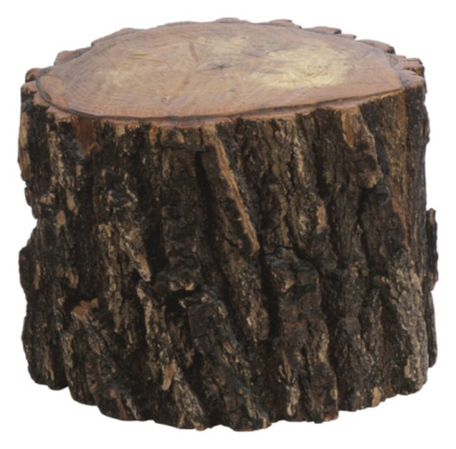 How to Turn a Tree Stump Into a Seat | Hunker