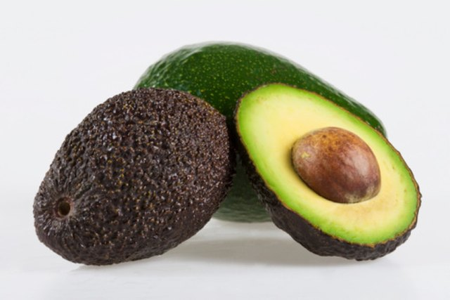 Life Cycle of the Avocado Tree | Hunker