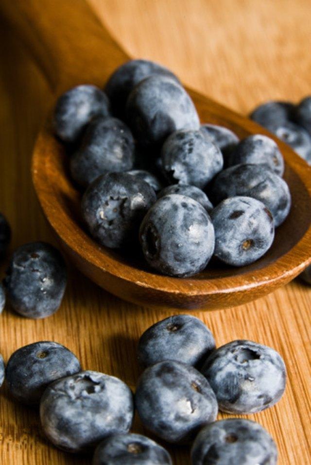 How to Plant Blueberries in Phoenix, Arizona | Hunker