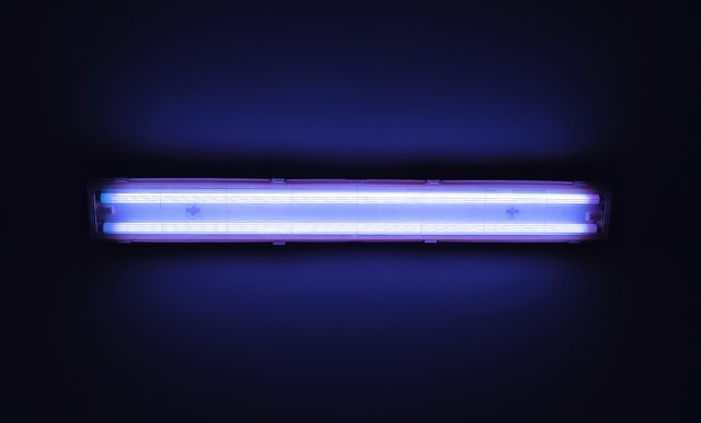 Detail shot of a fluorescent light tube on a wall. & What Is T5 T8 and T12 Lighting? | Hunker