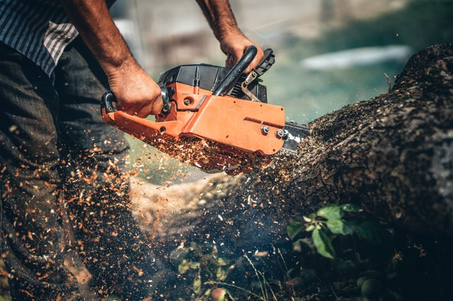 Close-up portrait of lumberjack cutting tree in the garden with gasoline chainsaw. splinters in different directions