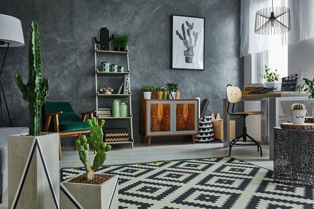 Apartment with decorative cactus