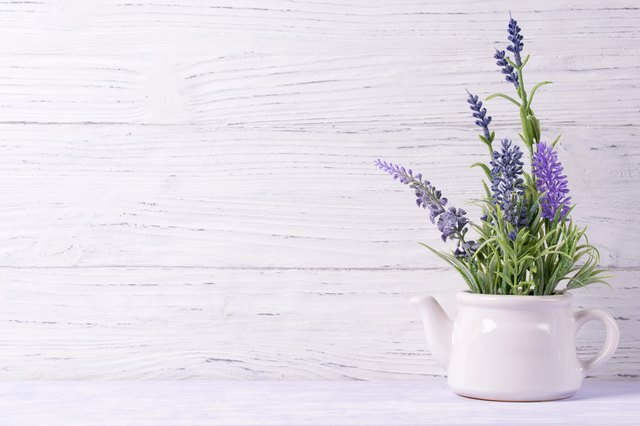 Lavender flowers in watering can, wooden background, copy space