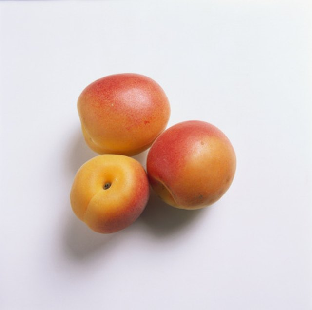 How to Identify an Apricot Tree | Hunker