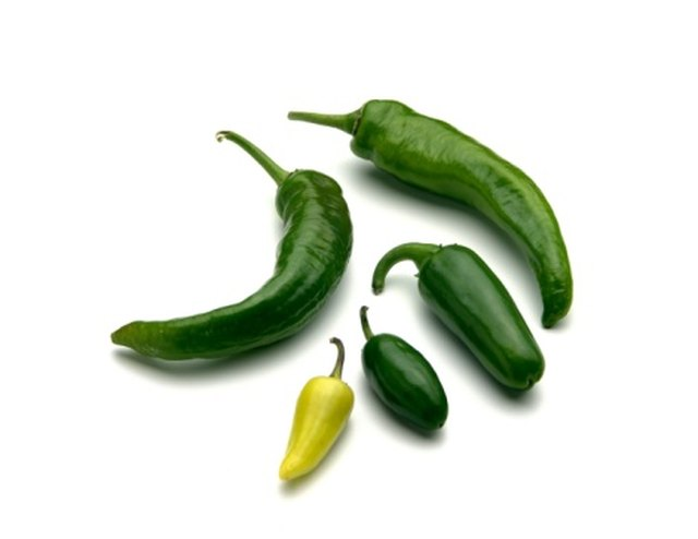 My Jalapeno Pepper Plants Are Not Growing | Hunker