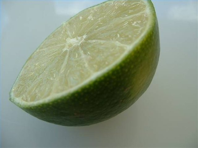 How to Grow Lime Trees from Seed   Hunker