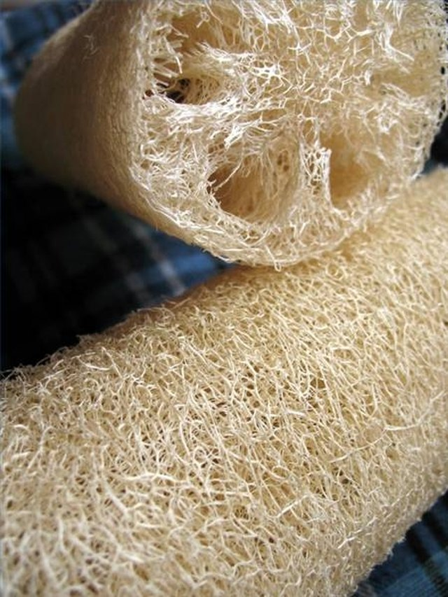 Differences Between Artificial Amp Natural Sponges Hunker