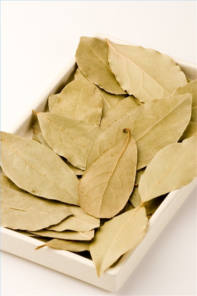 Narcotic Effects of Bay Leaves | Hunker