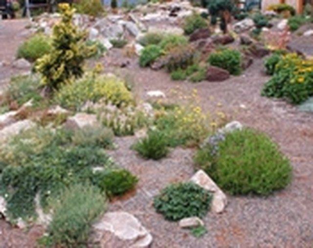 How to Landscape a Yard With Rocks & Gravel | Hunker
