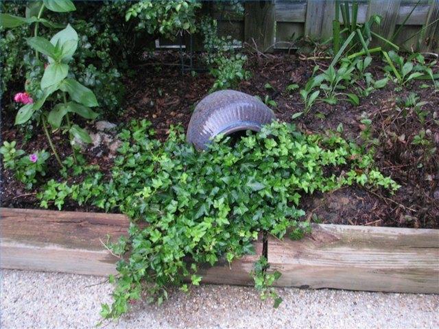 Elegant Low Maintenance Landscaping Ideas For The Backyard | Hunker