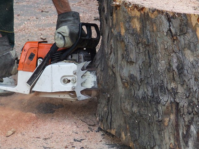How to tune a husqvarna chainsaw hunker step 1 greentooth Choice Image