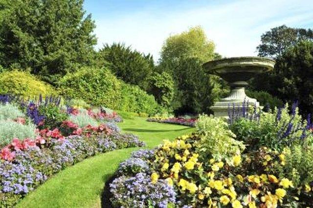 List Of Ornamental Plants Hunker