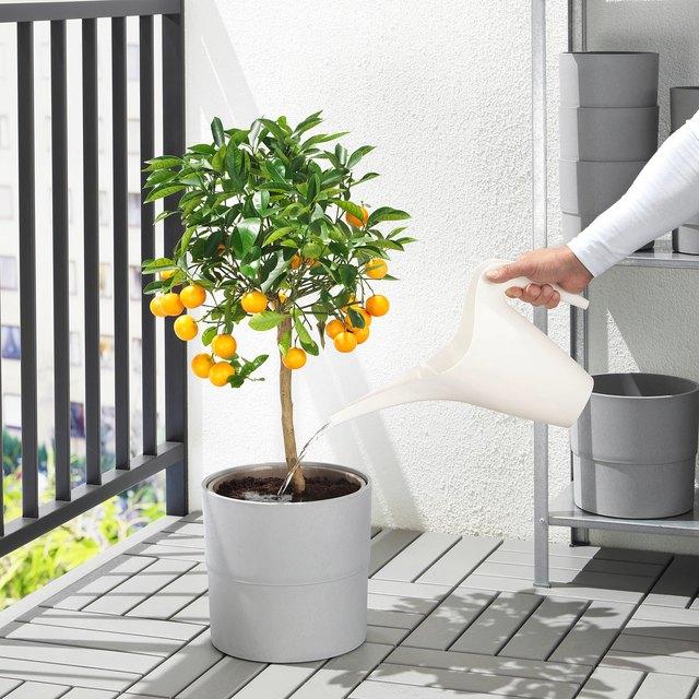 12 IKEA Gardening Essentials Under $15   Hunker