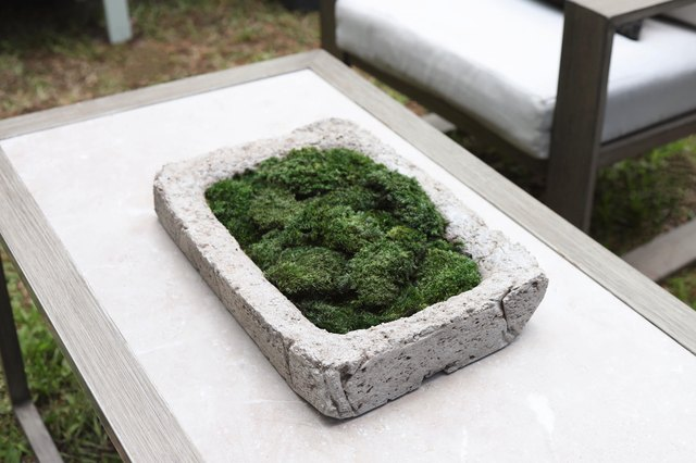 DIY Planter That's Part Cottage Core Charm and Modern Decor | Hunker