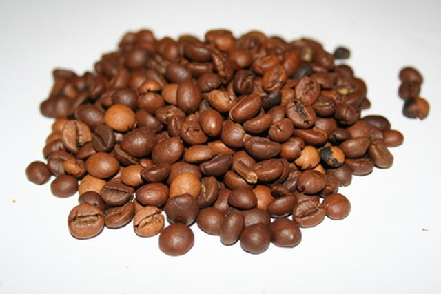 How to Grow Your Own Coffee Beans in Florida | Hunker