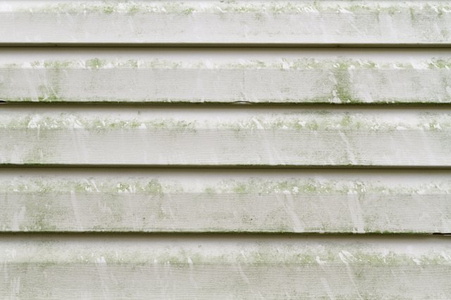 How To Remove Mold From Vinyl Siding Hunker