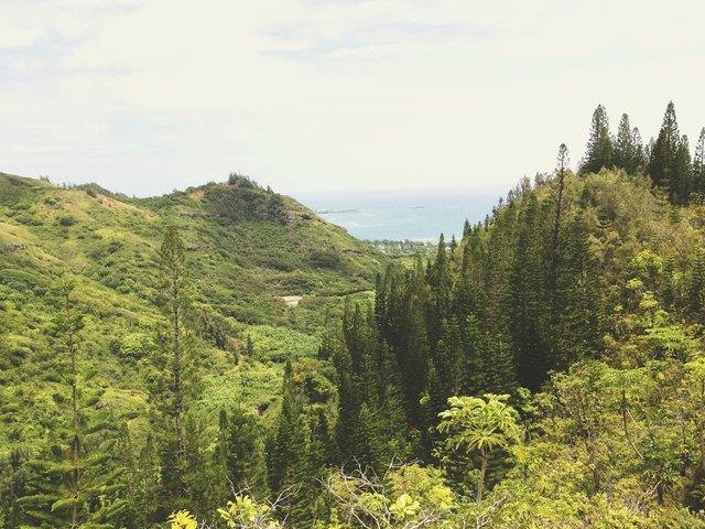 Green Valley Nature Landscape Ocean View