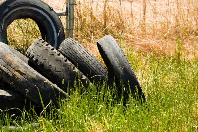 Tall Grass And Standing Water In Old Tires Can Provide A Breeding Ground  For Flies.