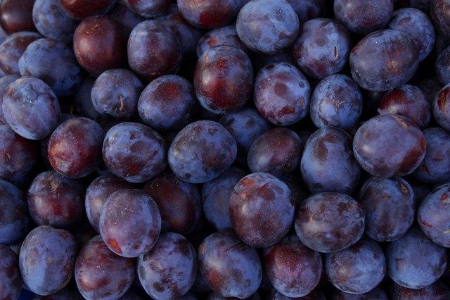 Close-up of plums