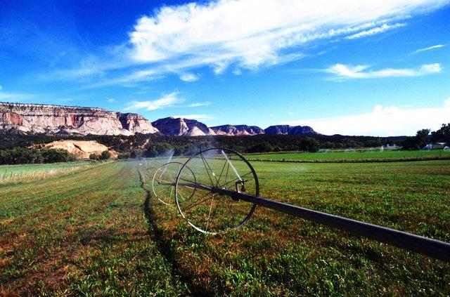 USA, Sprinkler wheels watering field