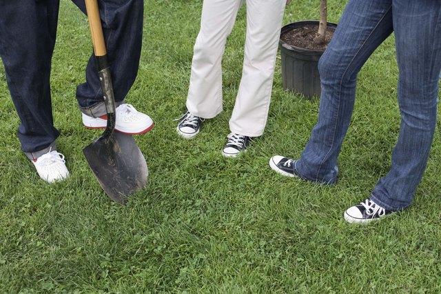 Legs of people planting tree