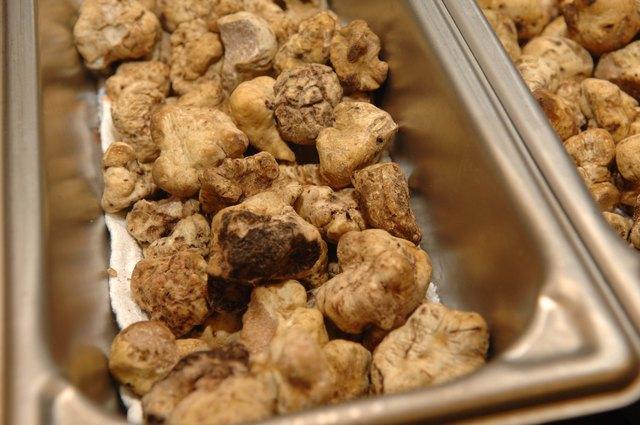 How to Grow White Truffles | Hunker