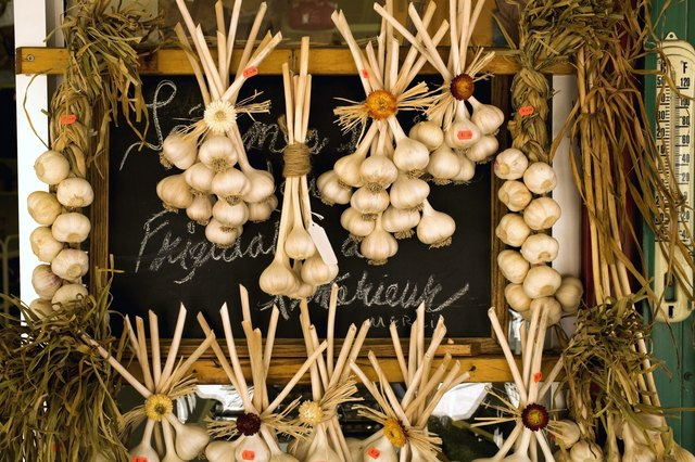 Hanging garlic bulbs