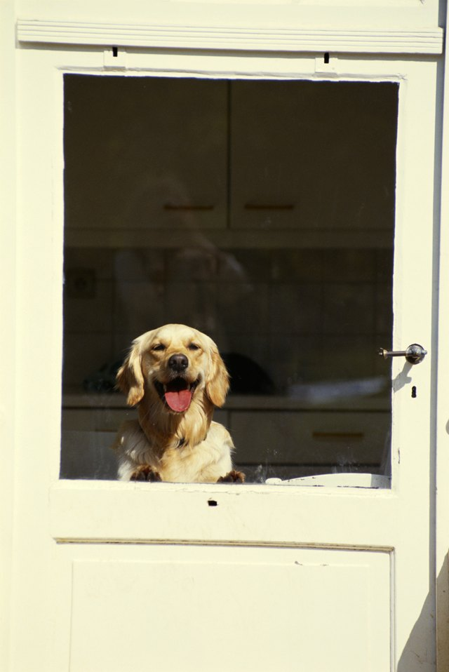 Removing Pet Scratches From A Glass Door | Hunker