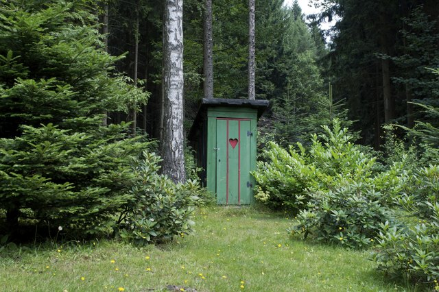 Old outhouse in the forest