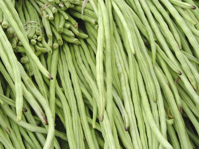 Food: Long Green Beans