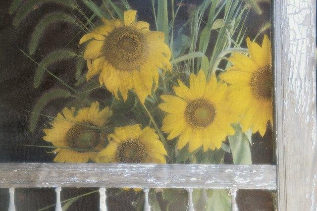 Sunflowers through screen door