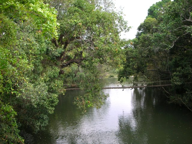 Hanging Rope Bridge over a River