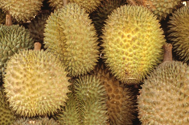 How to Get Rid of a Durian Smell in the Fridge | Hunker