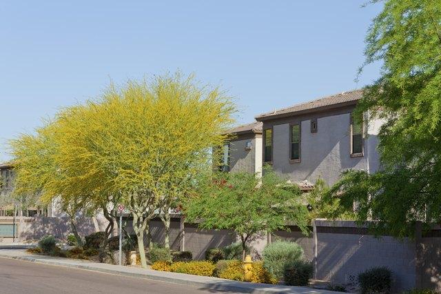 Arizona Housing
