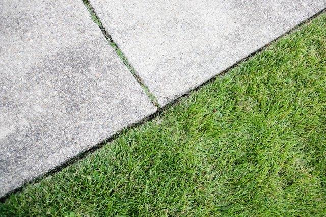 Sidewalk and grass